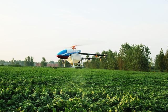 各地区适合无人机植保的主要作物及时间