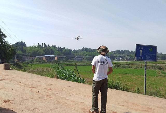 采用植保无人机进行水稻病虫害防治
