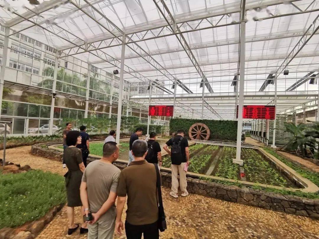 参观热带农科院大棚实验室
