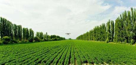 无人机植保服务的市场潜力被广泛看好