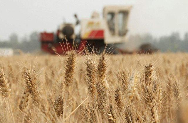 耕地地力保护补贴(直接发放给农民)