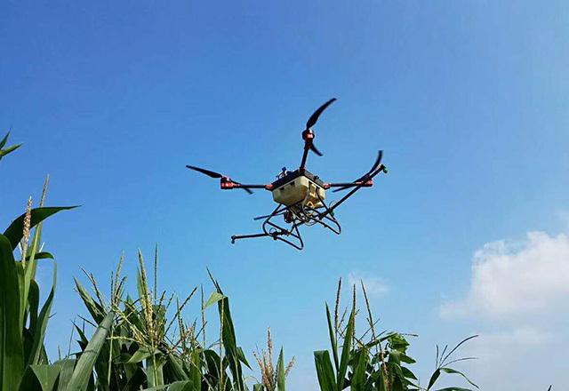 植保无人机玉米飞防
