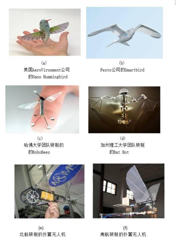 扑翼仿生飞行器发展进展插图12