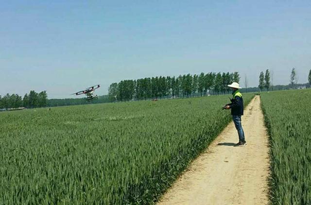 河南商丘:小麦喷药用上无人机