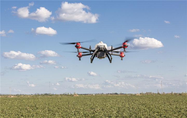 无人机牧羊,AI 养猪,这可能就是农业的未来