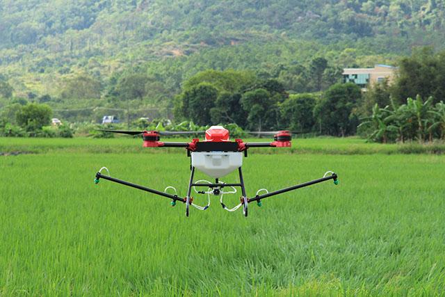 天鹰兄弟多旋翼植保无人机在水稻田演示施药作业