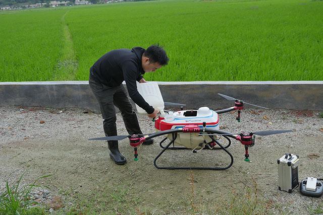 通过无人机对水稻病虫害发生规律选择作业时间