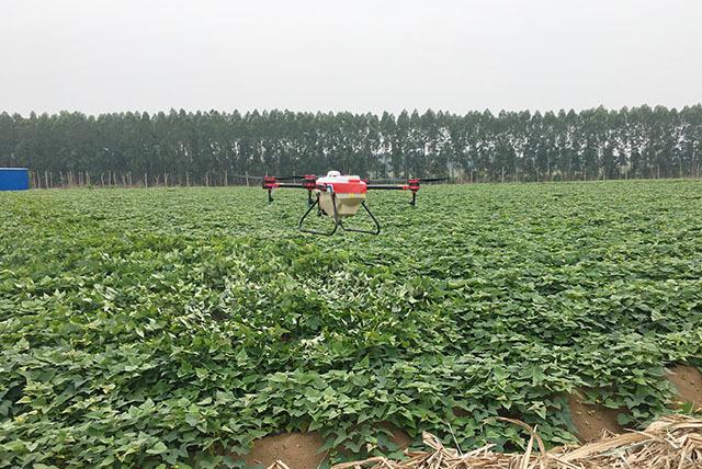 使用农用无人机给红薯喷洒农药