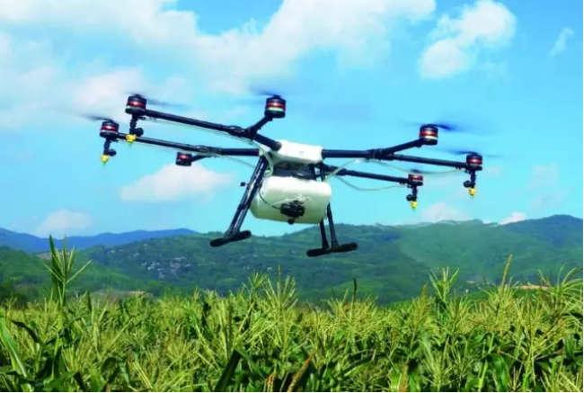 无人机飞防主力军作用凸显
