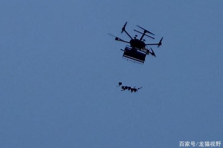 甘肃无人机学校-甘肃林业职业技术学院无人机专业怎么样?