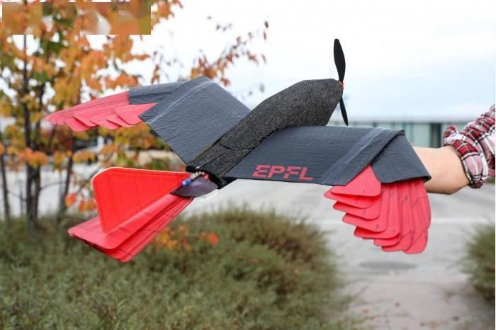 瑞士EPFL羽毛无人机