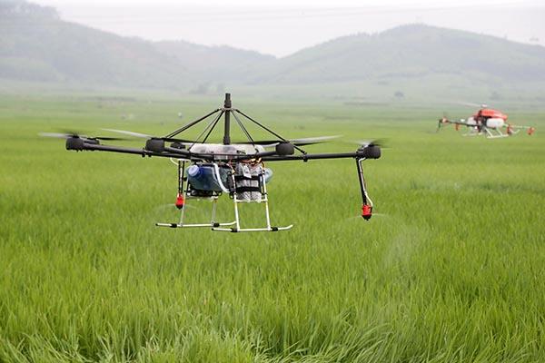 无人机+农林