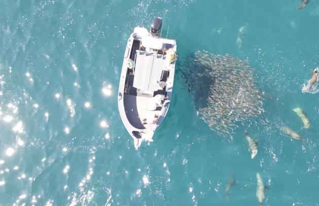 美国无人机政策-美国蒙大拿州拟禁止使用无人机等遥控设备捕鱼